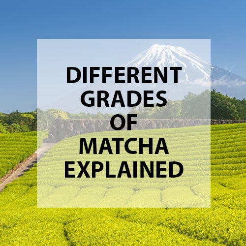 different grades of matcha